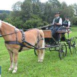 3. Teil Steiermark-Cup in Pircha/ Gleisdorf